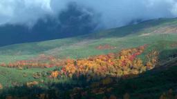 Autumn foliage of Mount Tokachi Footage