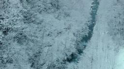 降雪と美瑛川 Footage