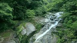 Shirataniunsui gorge in Yakushima Island Footage