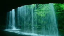 滝裏から見る鍋ヶ滝と新緑 Footage