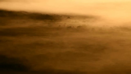 サテライト展望台より望む朝霧の釧路湿原 Footage
