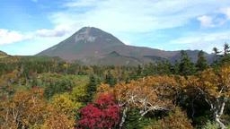 知床峠の紅葉と羅臼岳 Footage