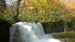 Choshi Otaki Falls of Oirase Mountain Stream Footage