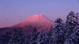 双岳台から望む朝焼けの雄阿寒岳 Stock Video Footage