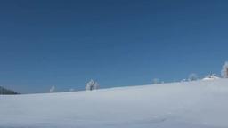 雪原の丘と霧氷のカラマツ Stock Video Footage
