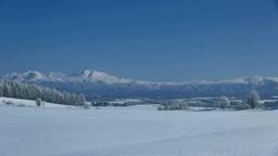 霧氷のカラマツと大雪山 Stock Video Footage
