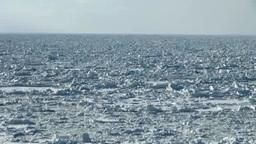 オホーツク海の流氷原 Stock Video Footage