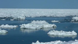 Drift ice in Okhotsk Sea Stock Video Footage