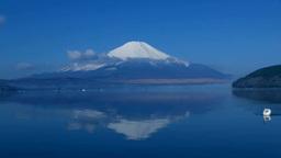 山中湖の白鳥との富士山 Stock Video Footage