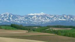 春の丘の畑と十勝岳連峰 Footage