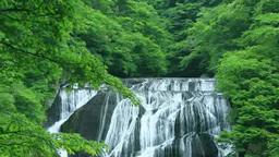 Fukuroda falls Footage