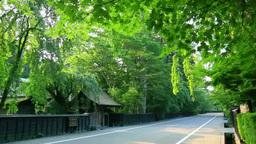 Samurai residence of Kakunodate Footage
