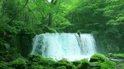 奥入瀬の銚子大滝 Footage