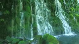 夏の元滝 Footage