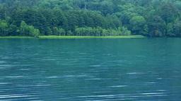Lake Onneto Stock Video Footage
