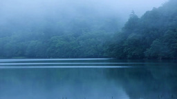 霧のオンネトー Stock Video Footage