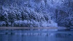 新雪のオンネトー湖畔 Stock Video Footage