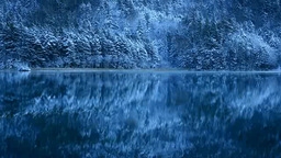 新雪のオンネトー湖畔 Footage