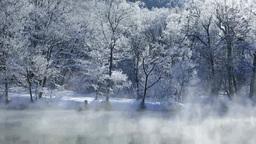霧氷の鳥沼と降雪 Footage