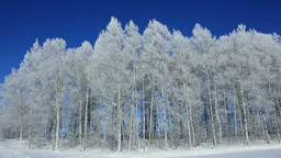 Blue sky and rime ice Stock Video Footage