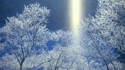 霧氷の摩周湖のサンピラーとダイヤモンドダスト Footage