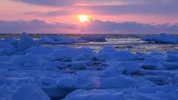 流氷と夜明け Footage