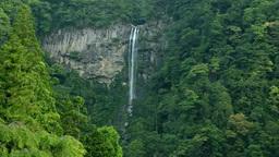 Nachi Falls Footage