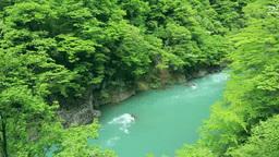 Dakigaeri Valley of the fresh green Stock Video Footage