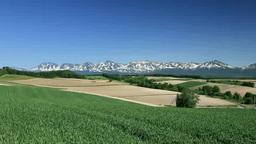 小麦畑の丘と十勝岳連峰 Footage