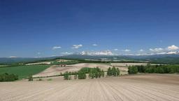 初夏の畑と大雪山 Stock Video Footage