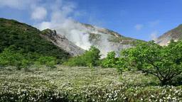 Mount Iozan and wild rosemary of Tsutsujigahara Footage
