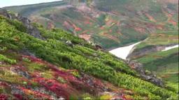 黒岳から紅葉の大雪山 Footage