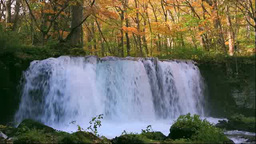 Choshiotaki Wateralls of Oirase in autumn colors Stock Video Footage