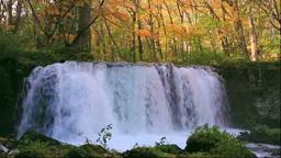 Choshiotaki Wateralls of Oirase in autumn colors Footage