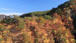 Naruko Gorge in autumn Stock Video Footage