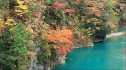 Dakigaeri Valley with autumn foliage Stock Video Footage