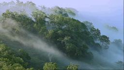 朝霧の小清水峠 Footage