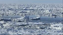 流れる流氷 Footage