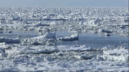 流れる流氷 Stock Video Footage