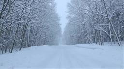 北海道 雪降る道と森 Stock Video Footage