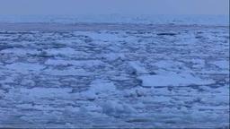 北海道 波に漂う流氷 Stock Video Footage