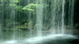 滝裏から見る鍋ヶ滝 Stock Video Footage