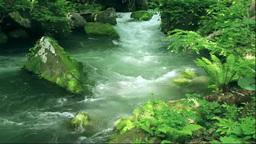 奥入瀬渓流の阿修羅の流れ Footage