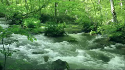 奥入瀬渓流の阿修羅の流れ三乱の流れ Footage