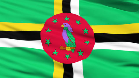 Waving national flag of Dominica Stock Video Footage