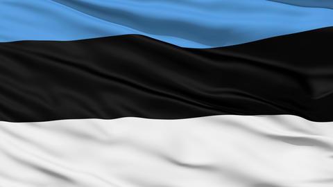 Waving national flag of Estonia Stock Video Footage