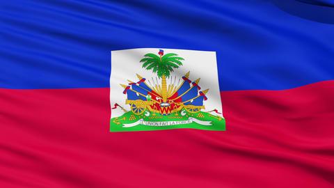 Waving national flag of Haiti Stock Video Footage