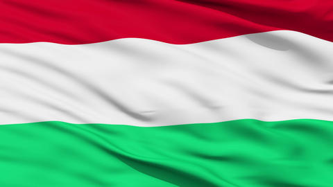 Waving national flag of Hungary Stock Video Footage