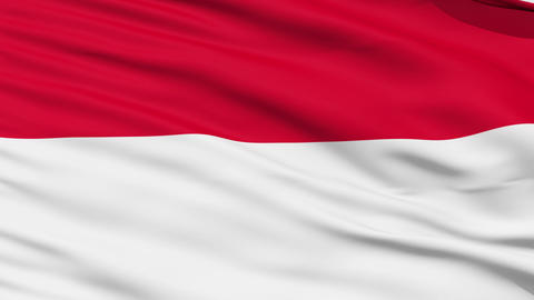 Waving national flag of Indonesia Stock Video Footage