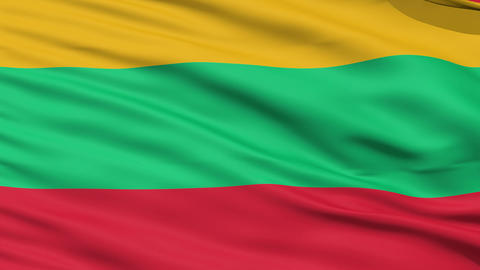 Waving national flag of Lithuania Stock Video Footage